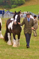 Horse Classes at Dunster Show 2016