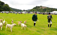 Five Couple Class at Dunster Country Fair 2017
