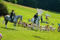 Hound Parade at Dunster Country Fair 2017